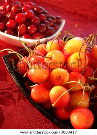 Fresh yellow and red cherry in bowl