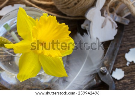 fresh yellow daffodil  with easter decorations on wooden table