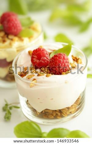 fresh yoghurt with fruits and granola - stock photo