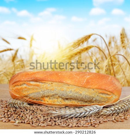 Freshly baked baguette with wheat on the table