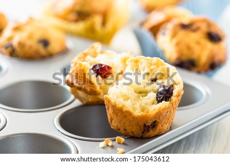 Freshly baked cranberry muffins in a muffin tin - stock photo
