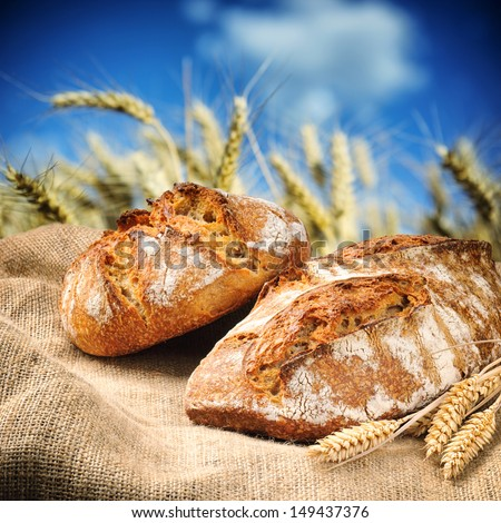 Freshly baked traditional bread with golden wheat field on background