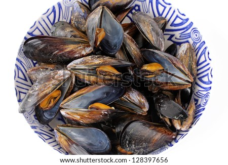 freshly boiled mussels in the pot - stock photo