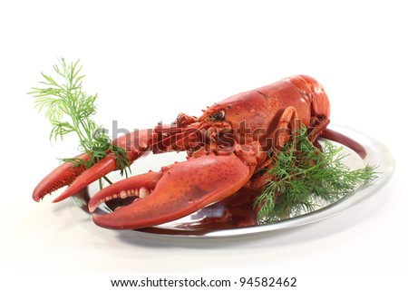 freshly cooked lobster on a platter with dill - stock photo