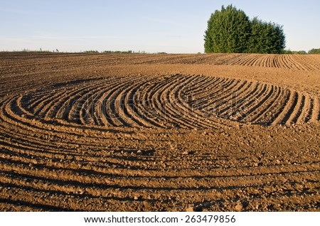 freshly cultivated farmland field soil - agriculture landscape - stock photo