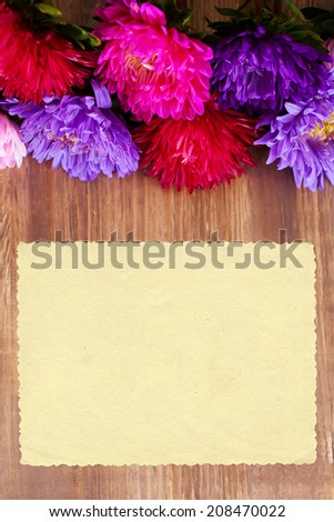 Freshly cut asters on wooden background - stock photo