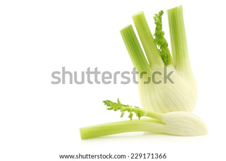 freshly cut fennel on a white background - stock photo