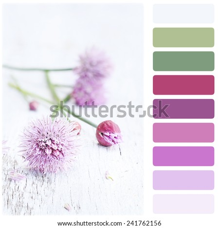 Freshly cut organic chives lying on a wooden background with color palette.  Shallow depth of field with selective focus on flower in foreground. - stock photo