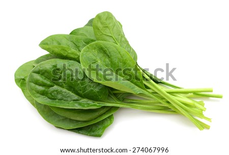 freshly green spinach on white background  - stock photo