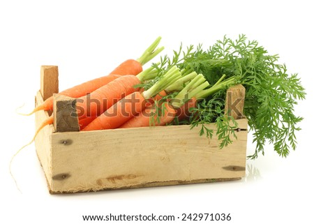 freshly harvested carrots in a wooden crate on a white background - stock photo