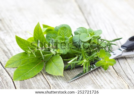 Freshly harvested herbs with scissors on wooden background - stock photo