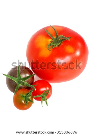 Freshly harvested homegrown tomatoes on white background - stock photo