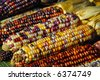 Freshly harvested Indian corn arranged for sale at a local market - stock photo