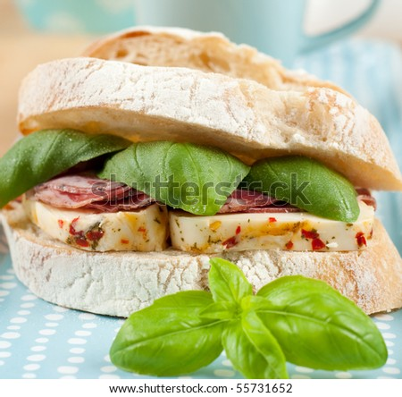 Freshly Made SAndwich with Mozzarella and Prosciutto - stock photo