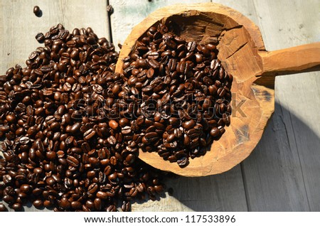 Freshly picked coffee beans in a large scoop. - stock photo