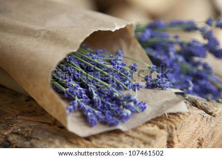 Freshly picked lavender wrapped in paper - stock photo
