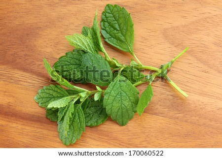 Freshly picked Lemon balm on a wooden background - stock photo