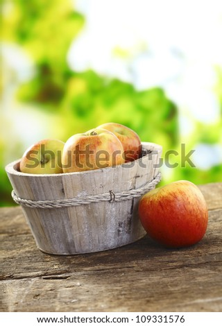 Freshly picked ripe red apples in a rustic wooden tub on an old wooden garden table - stock photo