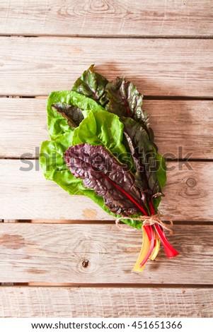 Freshly picked swiss rainbow Mangold or Swiss chard 'Rainbow' leaves  - stock photo