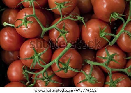 Freshly picked tomatoes with stalk at the market