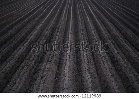 Freshly plowed black rich soil / field - stock photo