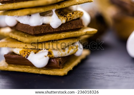Freshly toasted smores with large white marshmallows. - stock photo