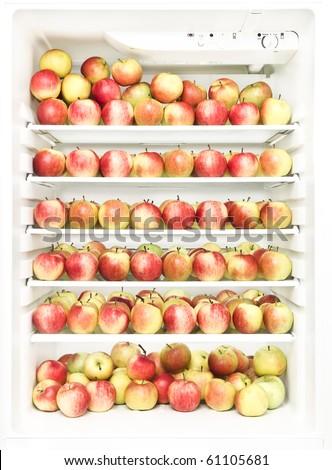 Fridge full of apples - stock photo