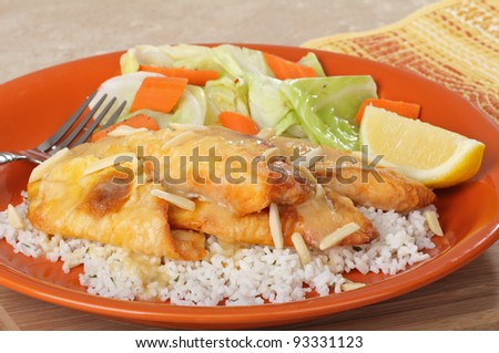 Fried catfish fillets on rice with lemon slice