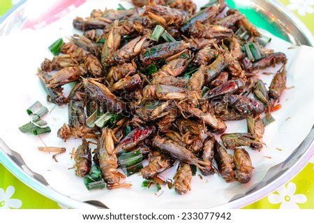 Fried Crickets Sold in the Market - stock photo