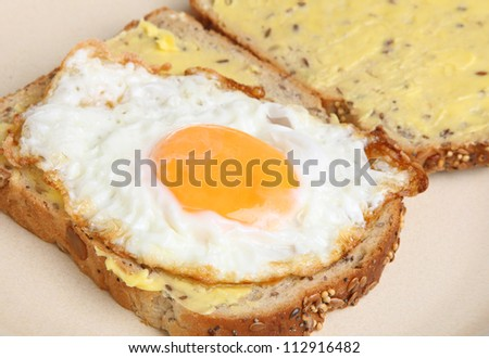 Fried egg sandwich with wholewheat bread.