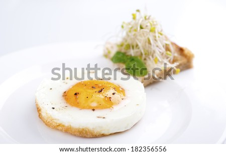 fried egg served with small wholegrain toast and sprouts - stock photo