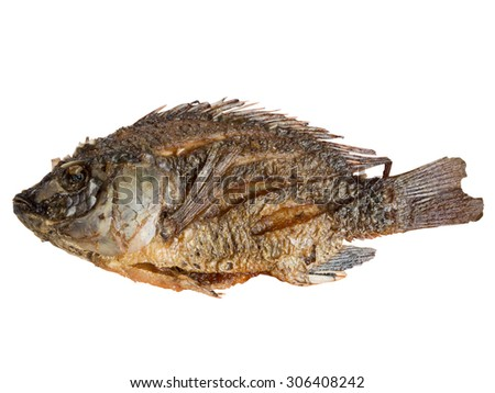 fried fish isolated in white background - stock photo