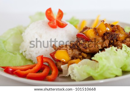 fried pieces of pork  with rice