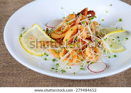 Fried squid isolated on withe dish - stock photo