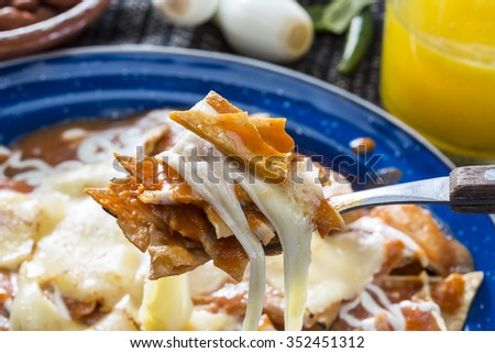 Fried Tortillas in red sauce  - stock photo