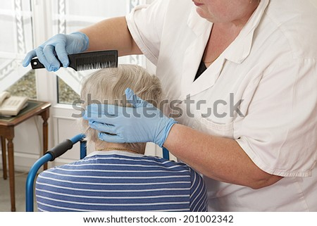 Friendly nurse cares for an elderly woman ,combing hair at home - stock photo