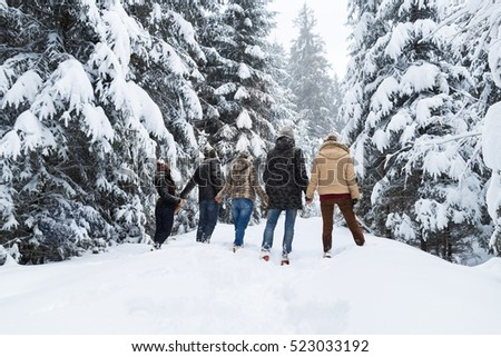 Friends Group Snow Forest Young People Walking Outdoor Winter Pine Woods