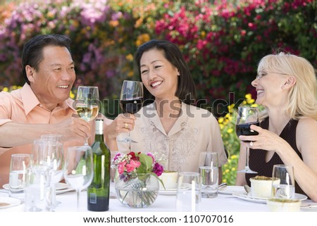 Friends having lunch together and toasting with wine - stock photo