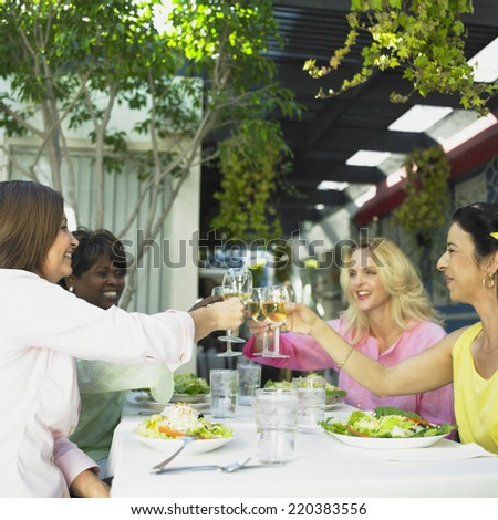 Friends toasting each other at a restaurant - stock photo
