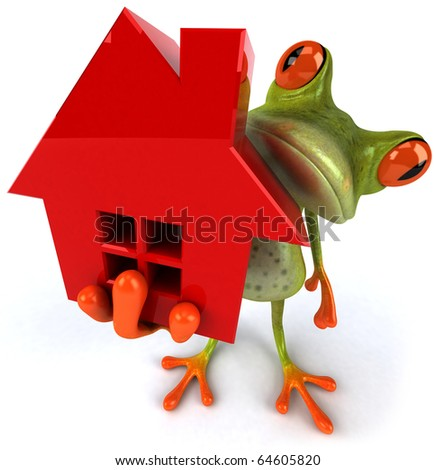 Frog and house - stock photo