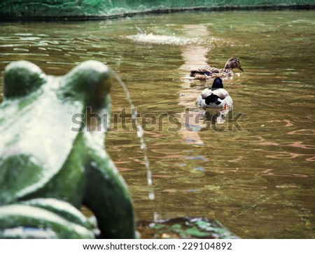 Frog fountain and two mallard ducks. Pond in the city park. - stock photo