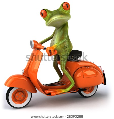 Frog on a scooter - stock photo