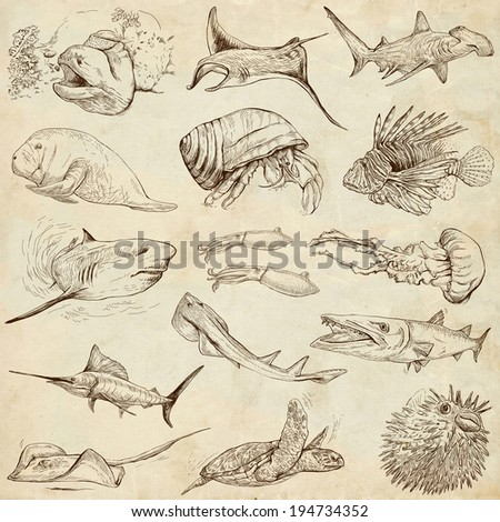 From series: Underwater and Marine life (set no.2) - Collection of an hand drawn illustrations. Description: Full sized hand drawn illustrations drawing on old paper. - stock photo