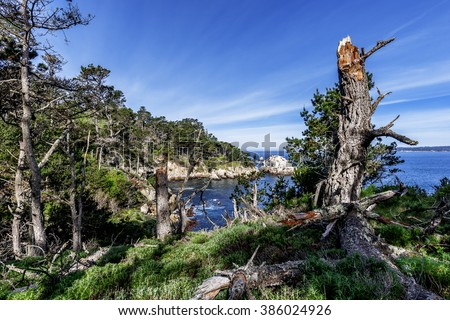 From the North Shore Trail you see Bluefish Cove & coastline, at Point Lobos State Natural Reserve, along the rugged Big Sur coastline, near Carmel and Monterey, CA. on the California Central Coast. - stock photo