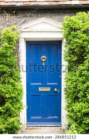 Front of a cottage covered with green hedge closeup - stock photo