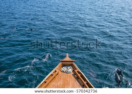 Front Part Of A Wooden Ship Sailing The Indian Ocean Accompanied By Group Dolphins