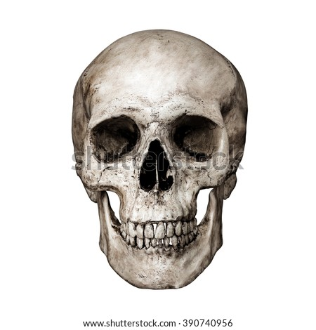 Front side view of human skull on isolated black background with clipping path - stock photo