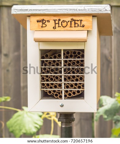 Front View Of A Handcrafted Bee House For Mason Bees To Promote Garden Pollination
