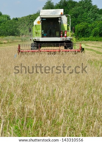 Front view of modern combine harvester in the wheat field during harvesting
