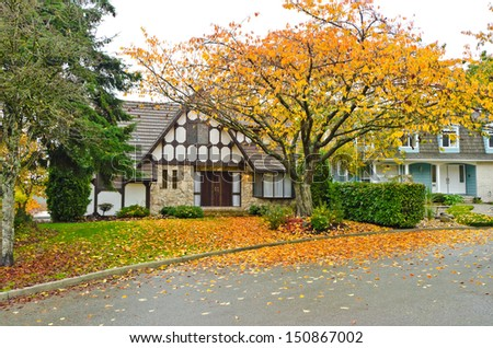 Front yard of the house covered with the leafs in a fall, autumn wet day. Vancouver, Canada. - stock photo